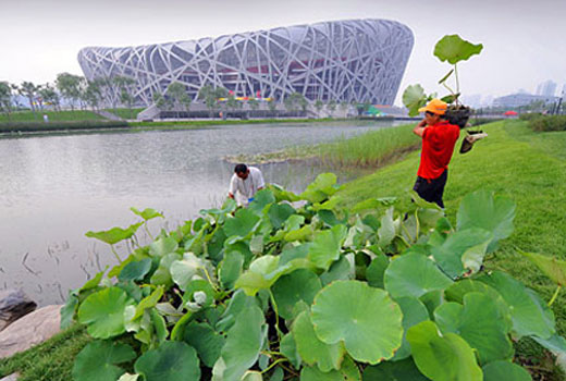 Beijing Olympic 2008 Goes Beyond Architecture