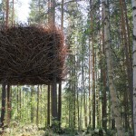 Treehotel The Nest / by By Inredningsgruppen