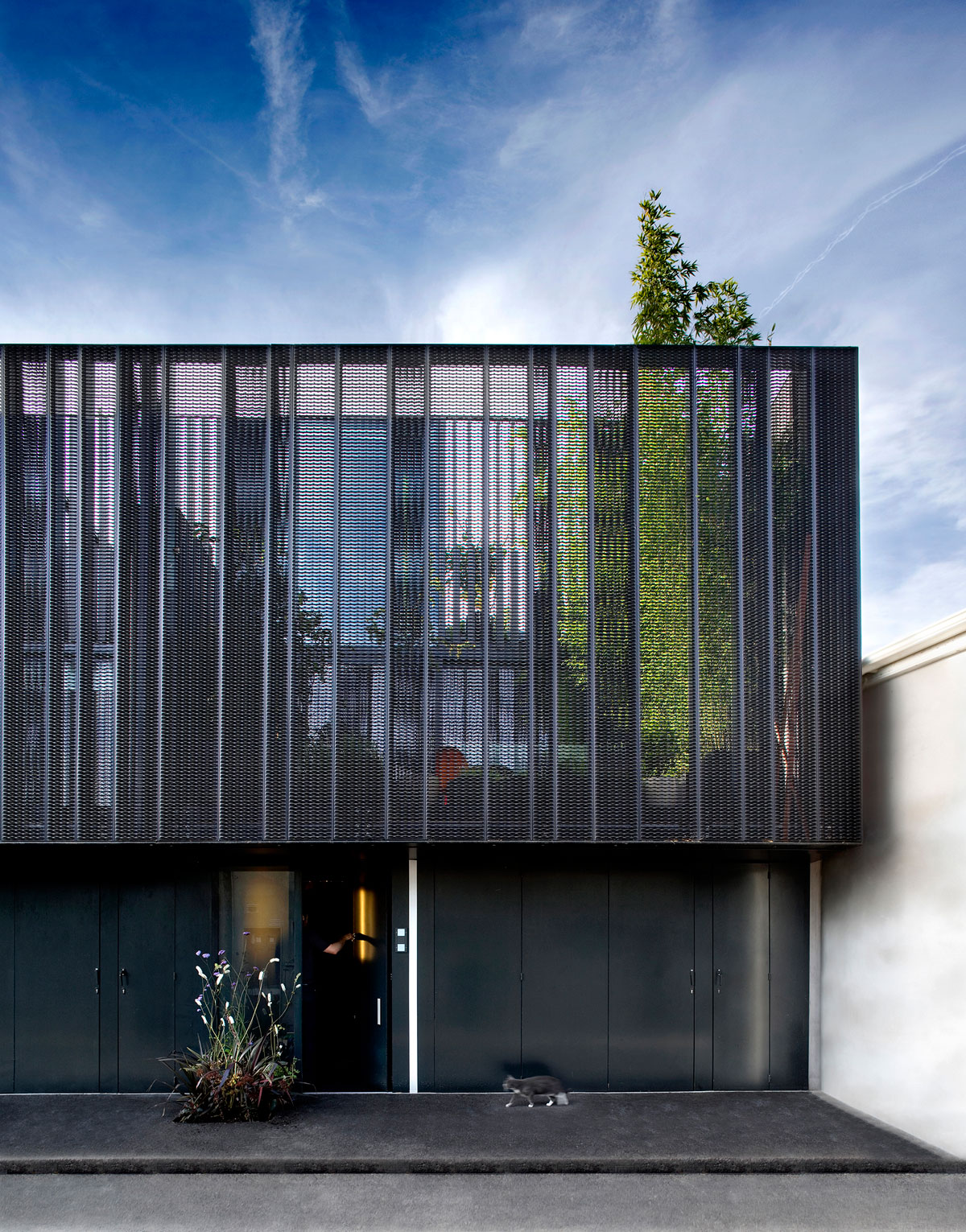 Moire Moire Moire (3 Mews Houses) by ODOS architects